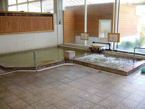 大鷹の湯内湯.JPG